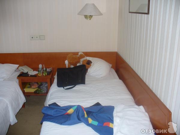Отзыв: Гостиница Пулковская Park Inn (Россия, Санкт-Петербург) - Гостиница Санкт-Петербурга Пулковская Park Inn.